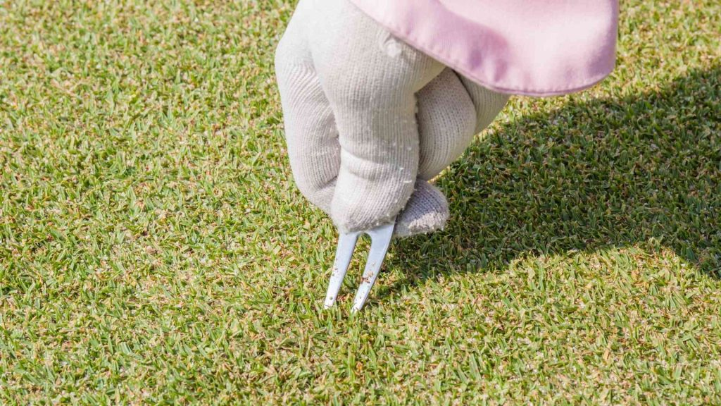 Using Golf Pitchfork